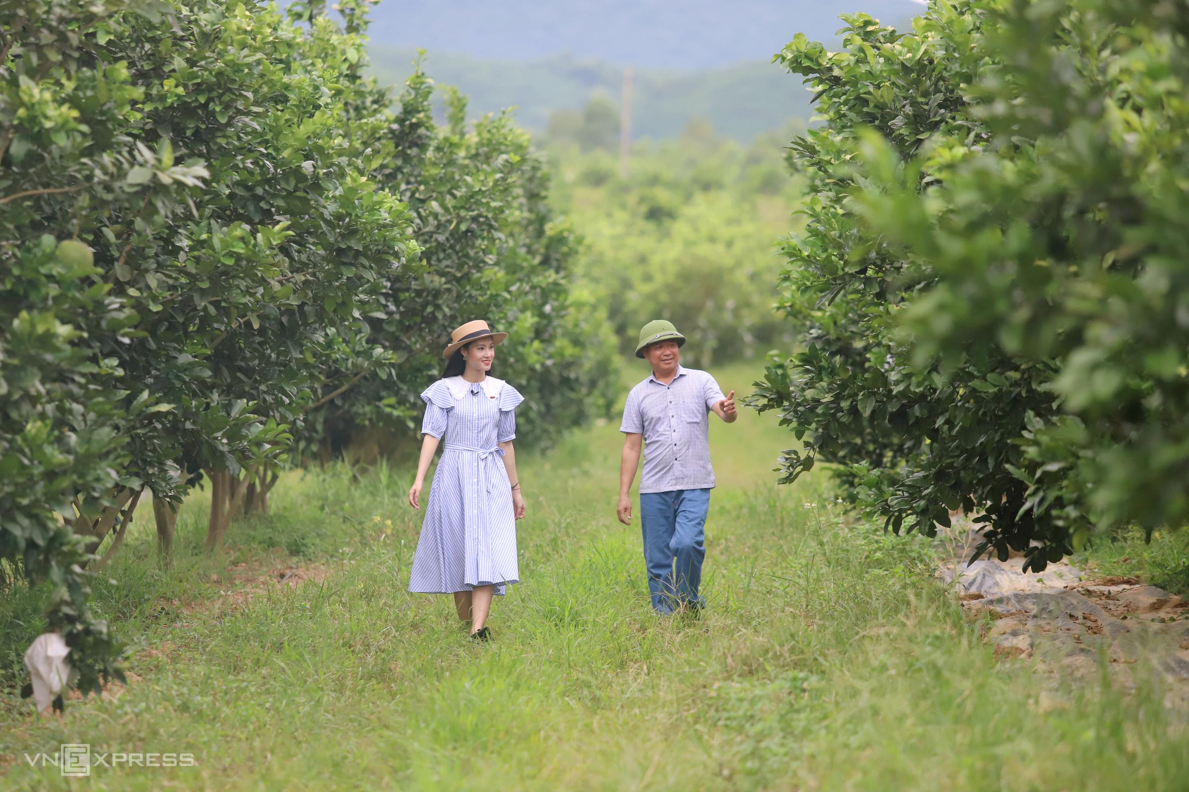 Ha Tinh farm offers agritourism