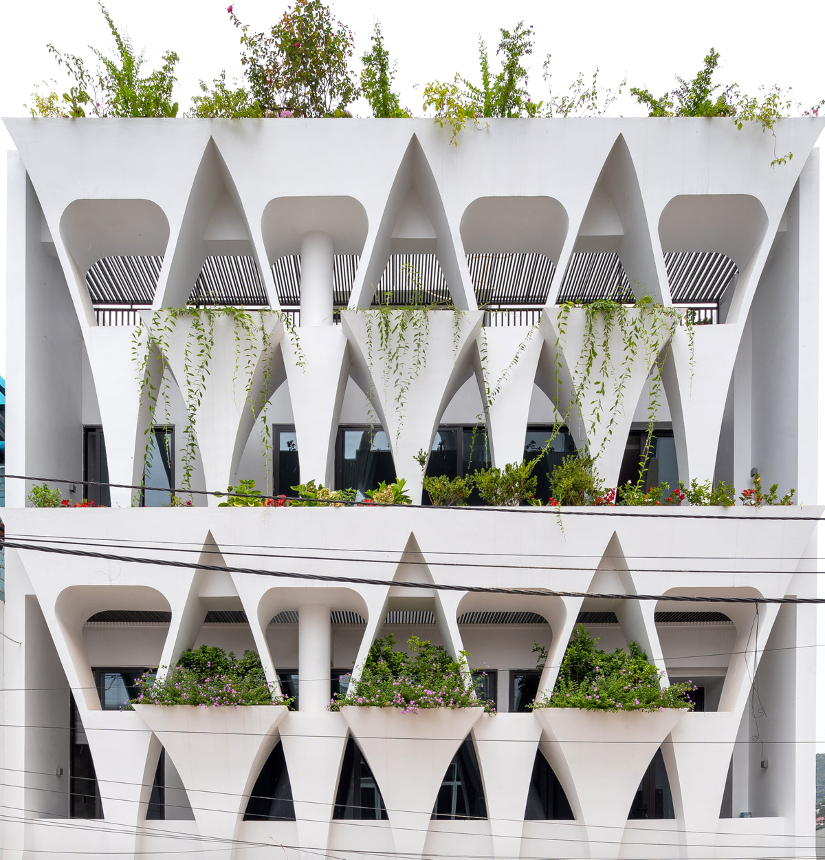 The facade is inspired by hands that are cherishing each green patch.
