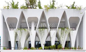 Son La house offers abundance of green living