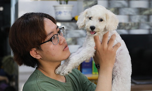 HCMC animal lovers struggle to care for pets amid pandemic