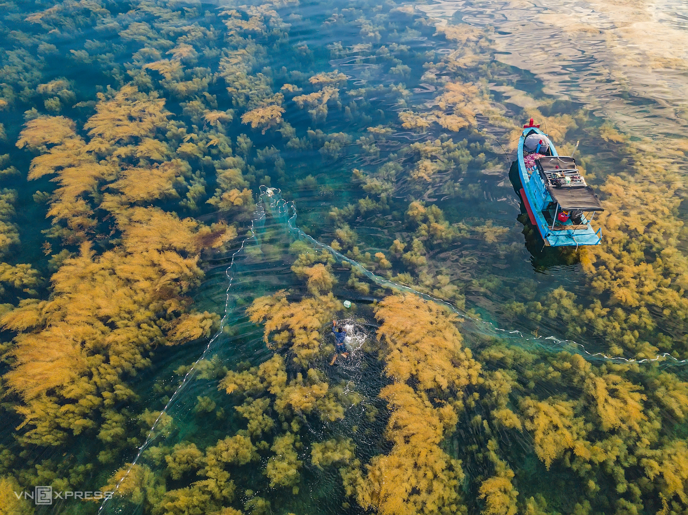 Seafood, seaweed nourish fisherfolk off Quang Ngai coast