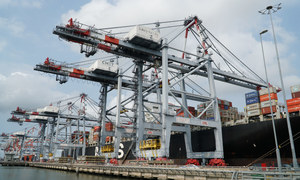 Vietnam's position in global supply chain remains strong: analysts