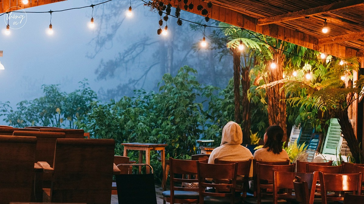 Without noise and pollution, the cafe is a popular address to enjoy a fresh breath of air. The spot offers three fully-equipped bedrooms to serve overnight guests.   Its menu includes coffee, yogurt, fruit tea and snacks with prices starting from VND40,000.   Address: 31/8c 3/4 Street, Ward 3