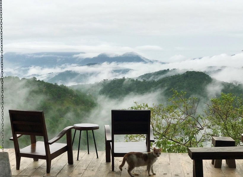 Sitting on the cafe balcony, guests can admire a breathtaking view of Da Lat shrouded in thick fog. The cafe mainly consist of wood and bamboo.   The menu varies from coffee, cappuccino to yogurt with prices ranging from VND30,000-60,000. It is open from 7 a.m. to 9:30 p.m.   Address: 116 Hung Vuong Street Ward 11