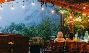 Four coffee shops that offer escape from bustling Da Lat