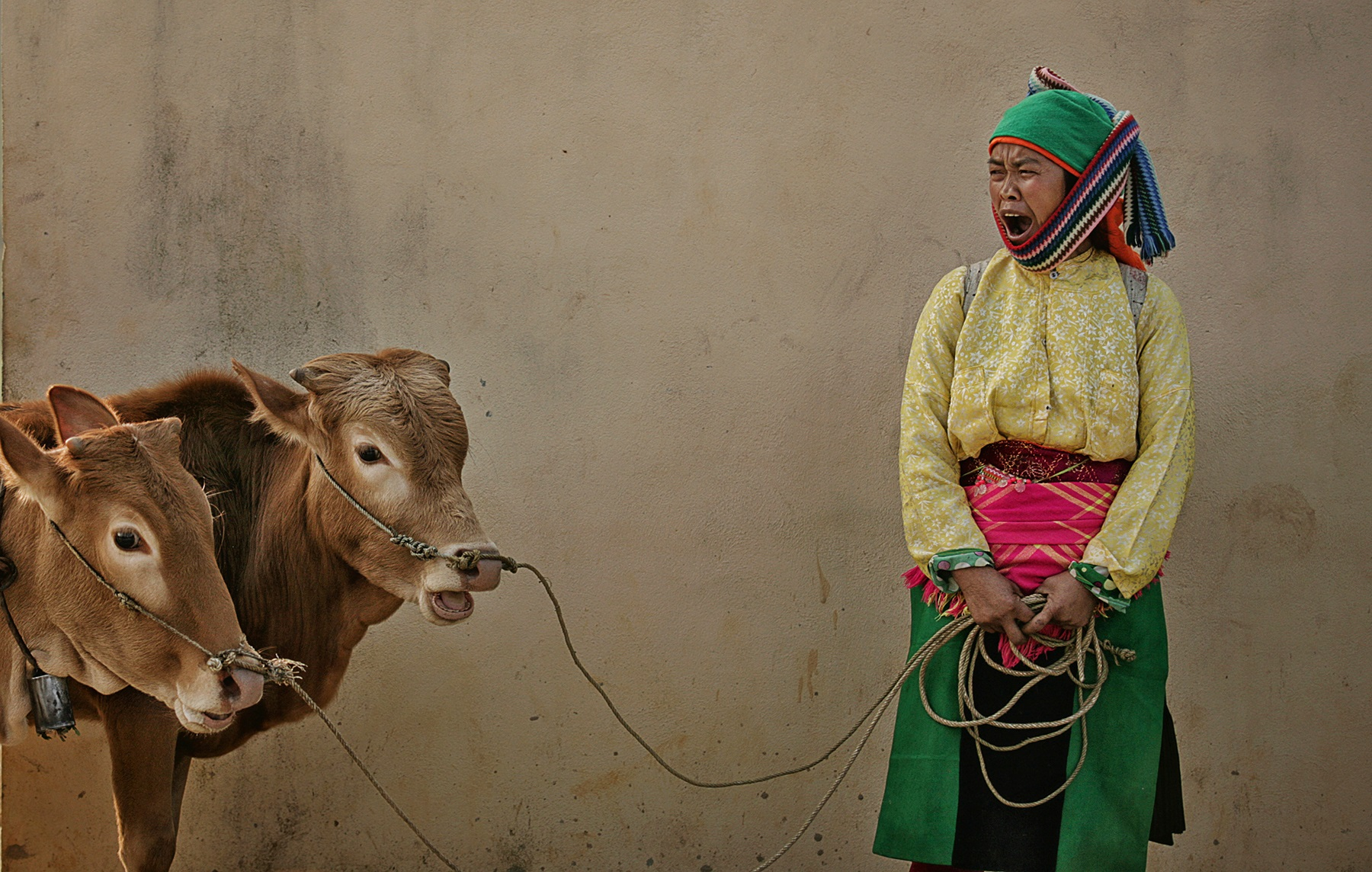 Lensman's journey captures daily moments across Vietnam's northern highlands