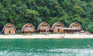 American news site lists Cat Ba among must-visit national parks
