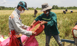 World Bank says Delta variant slowing economic growth in East Asia and Pacific