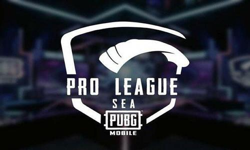 Four teams to represent Vietnam at Southeast Asian PUBG championship